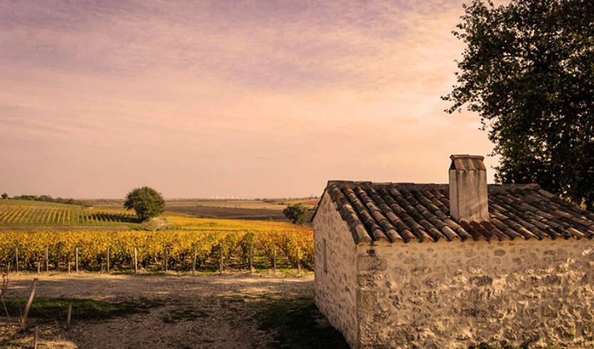 Bordeaux moulin